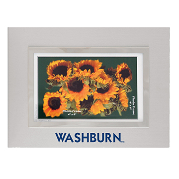 Picture frame - Washburn Silver