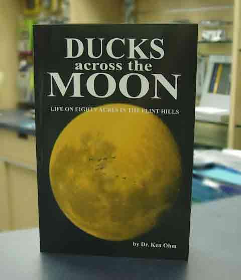 Ohm - Ducks Across the Moon