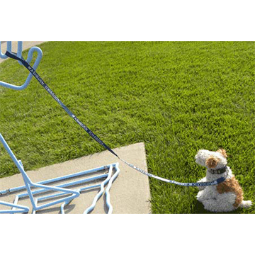Image For Pet Leash - Washburn Ichabods