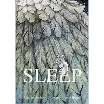 Image For Silvestri - Sleep