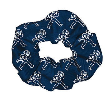 Image For Hair Scrunchie - Ichabods