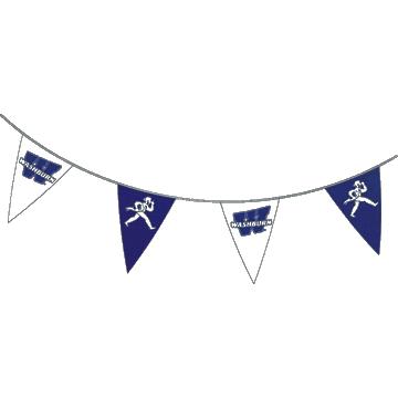 Washburn Triangle Banner